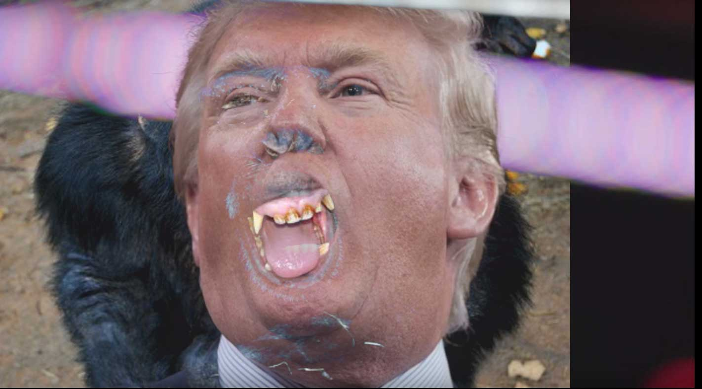 Donald Trump Poo Throwing Horse Paint Video